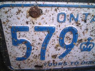[bugs_license_plate.jpg]