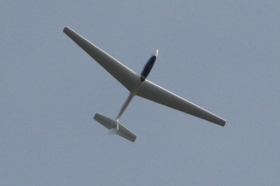 gliding_upside_down.jpg