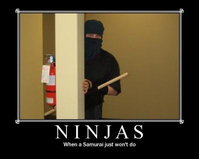 ninja_motivational_poster.jpg