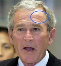 prez_bush_drunk.jpg