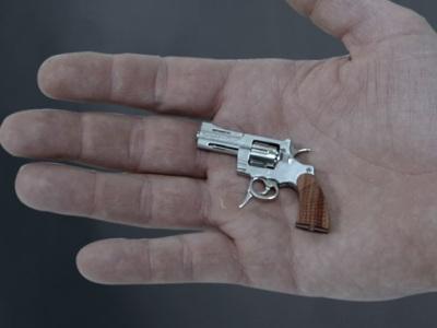 wee_tiny_gun.jpg